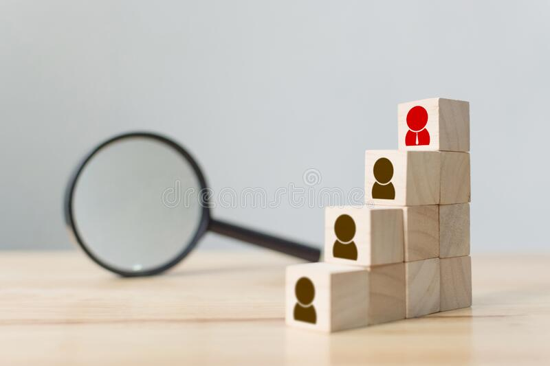 Human resource and talent management and recruitment business building team, Personal development of employee in organisation,. Human resource and talent stock image