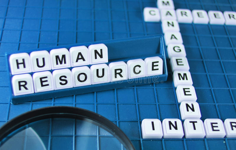 Download Human resources stock photo. Image of interview, human - 15489148