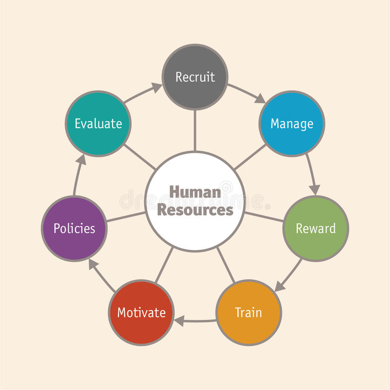 Human Resources cycle. Relevant topics about human resources Vector version available royalty free illustration