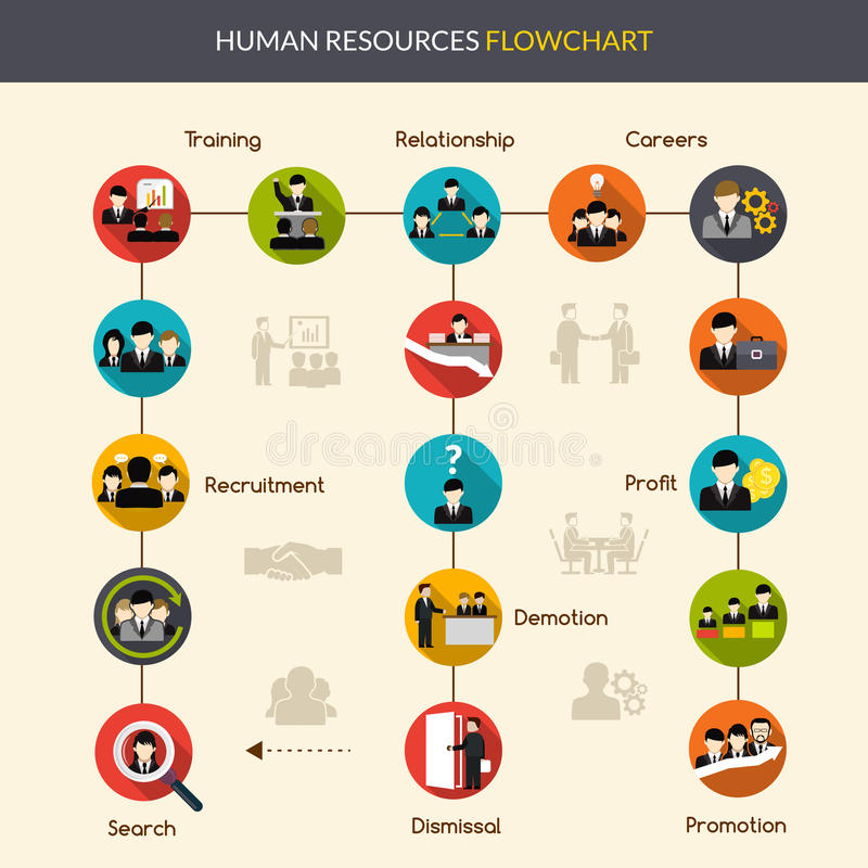 Human Resources Flowchart. With search recruitment and training symbols vector illustration stock illustration
