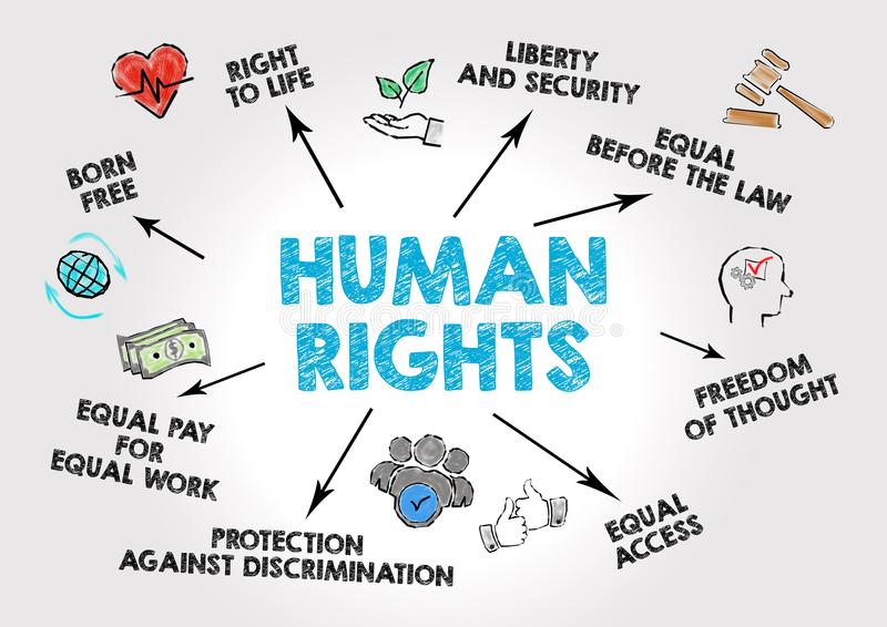 Human rights Concep. T. Chart with keywords and icons on gray background vector illustration