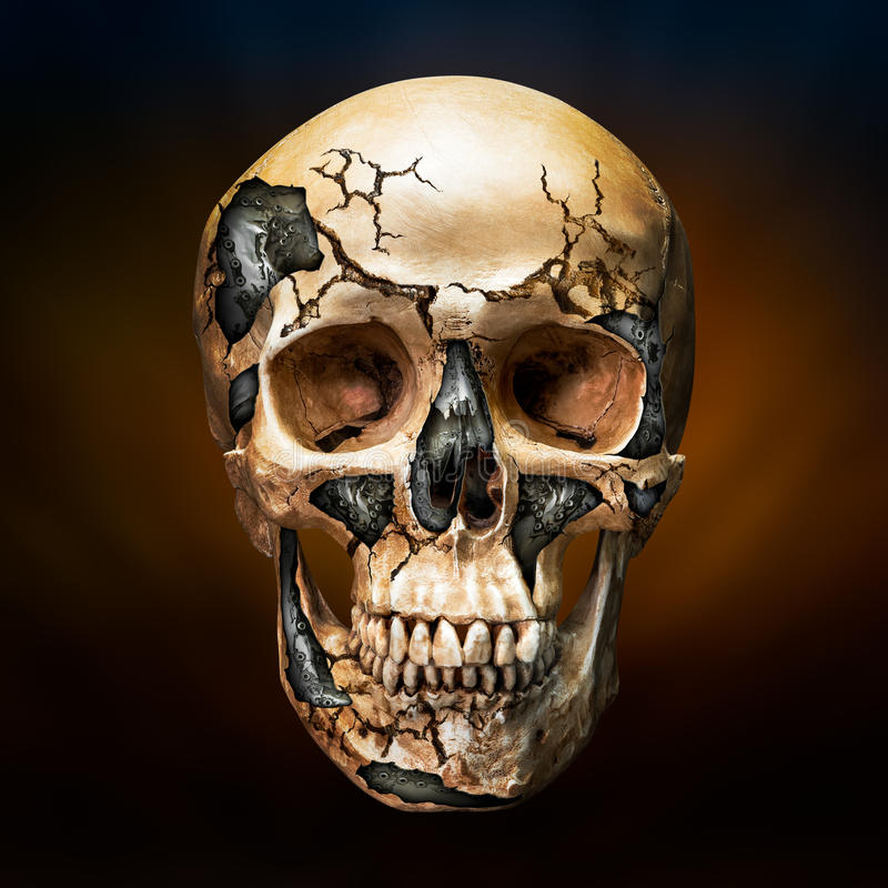 Human and robot skull. Steel inside broken human skull in concept of the robot in future technology royalty free stock photography