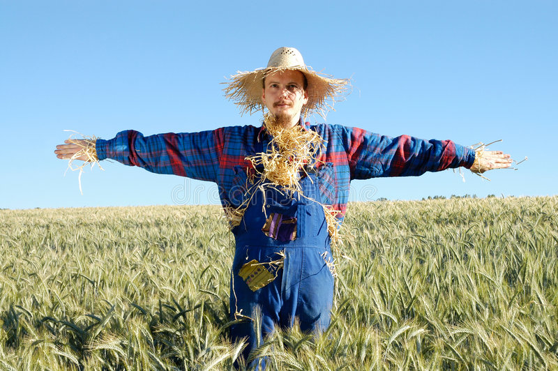 Human scarecrow royalty free stock images