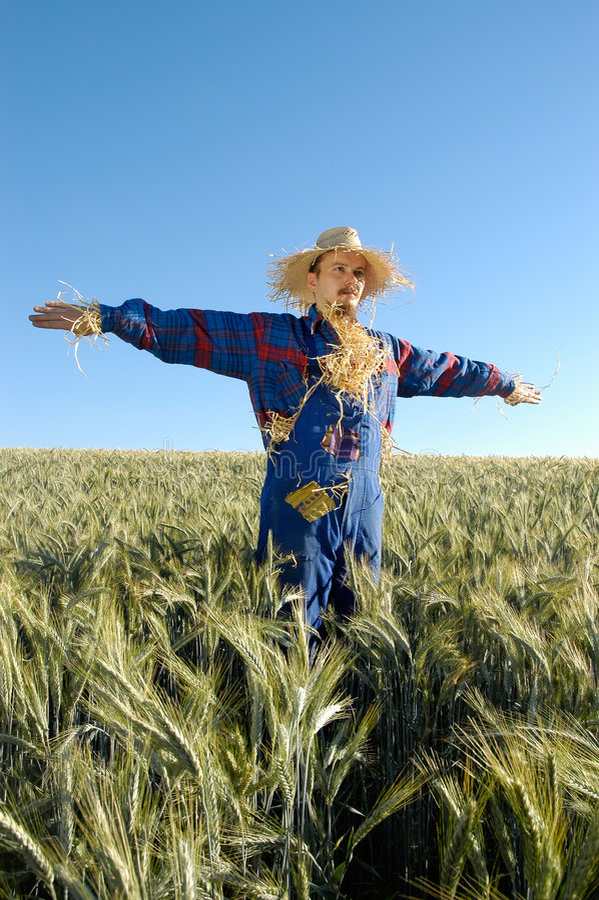 Human scarecrow stock image