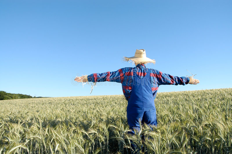 Human scarecrow stock photos