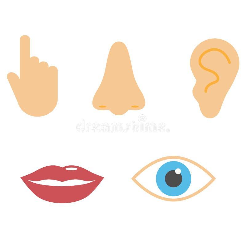 Human senses icon. Vector illustration, flat design stock illustration