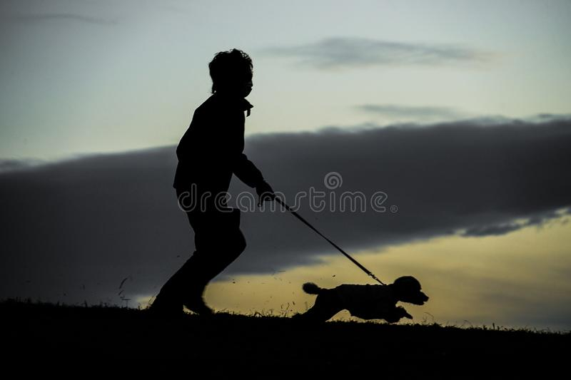 Human silhouette to the dog for a walk in the evening of the hill. Shooting location :  Chofu, Tokyo royalty free stock photography
