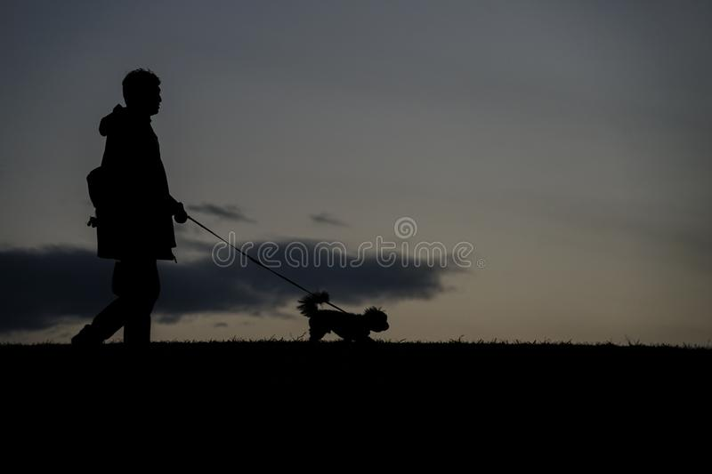 Human silhouette to the dog for a walk in the evening of the hill. Shooting location :  Chofu, Tokyo royalty free stock image