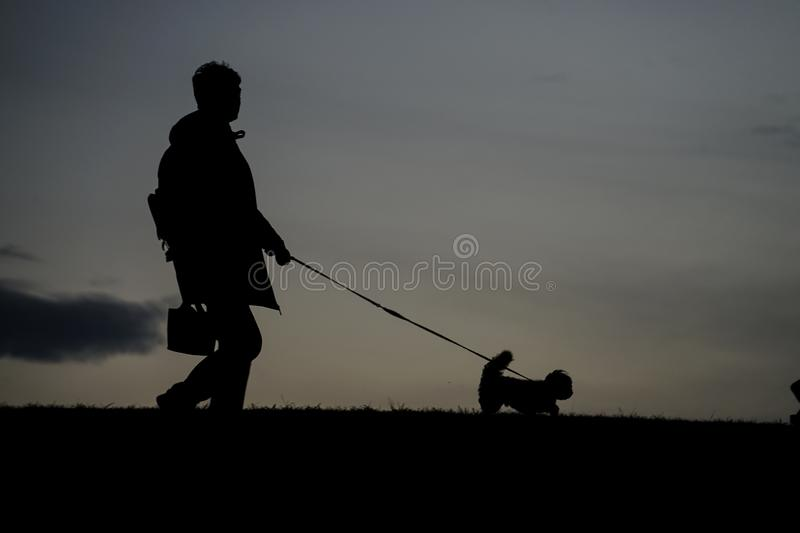 Human silhouette to the dog for a walk in the evening of the hill. Shooting location :  Chofu, Tokyo stock photography