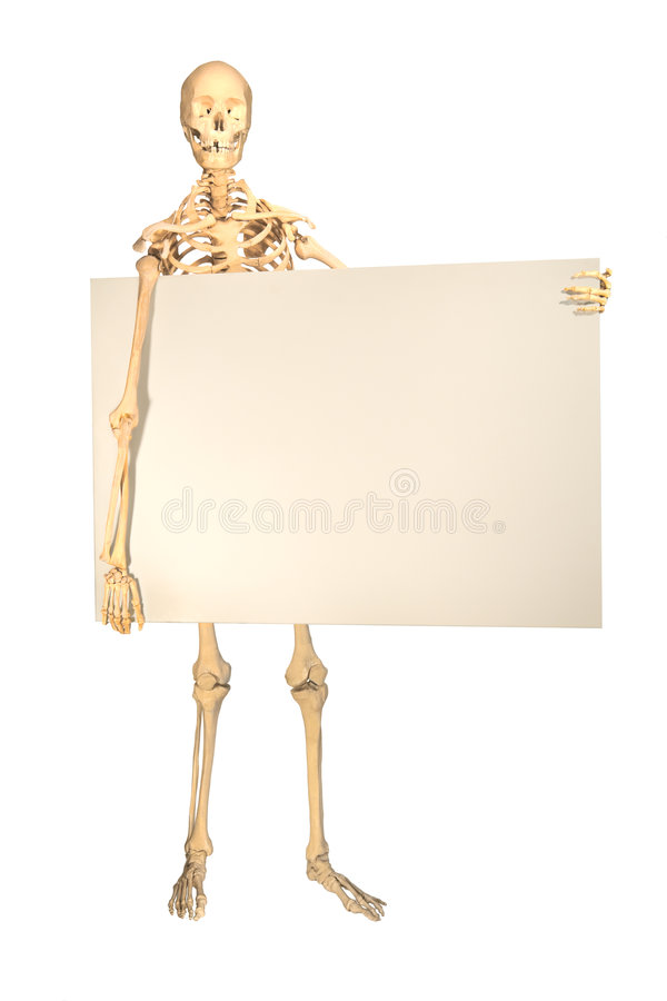Human skeleton holding sign stock images