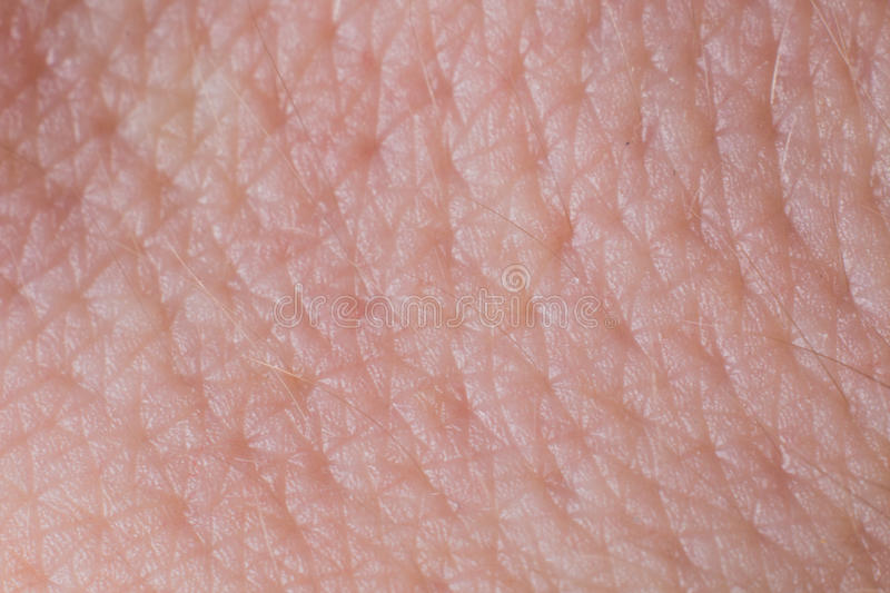 Human skin texture close up. Macro of brown young person clean skin stock photo
