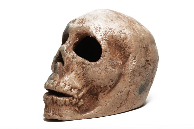 Download Human skull stock image. Image of isolated, skull, symbol - 14634539