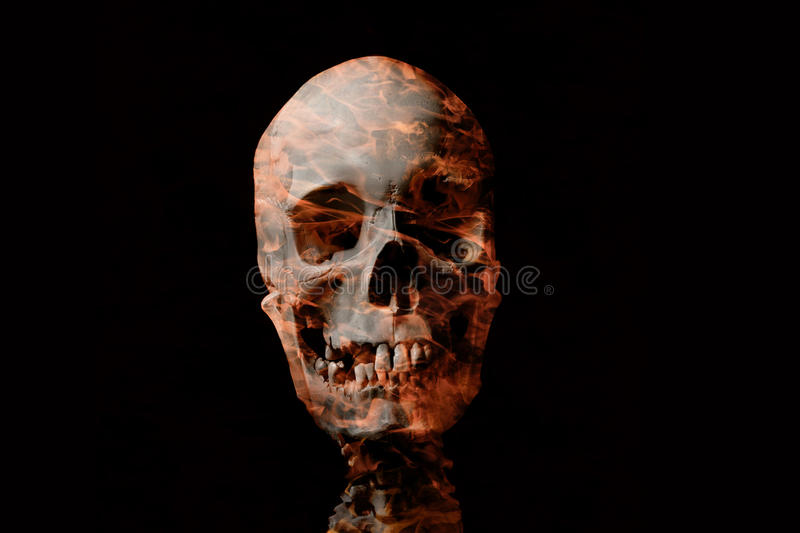 Download Human skull stock image. Image of dead, black, scary - 26496017