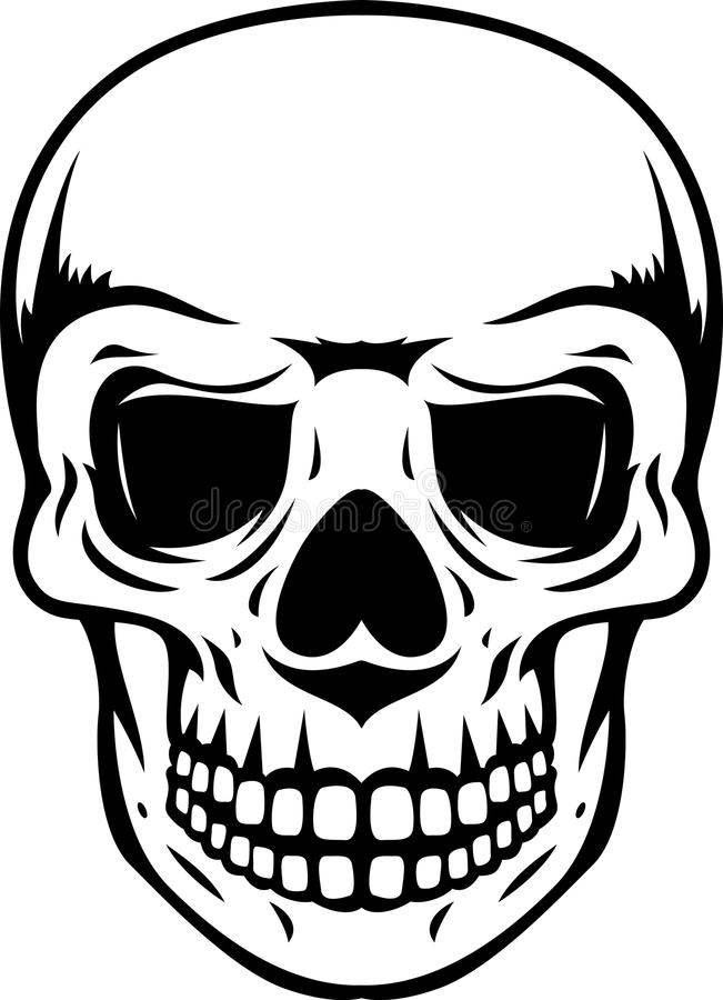 Human Skull Royalty Free Stock Photos