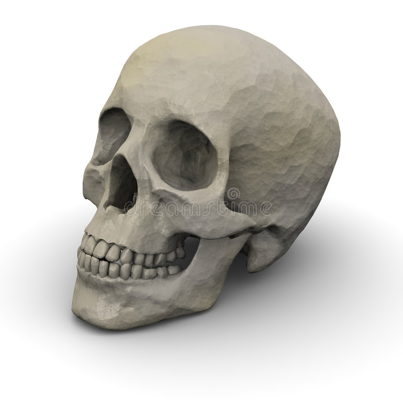 Human Skull. Hi-Res 3D Render of a royalty free stock photo