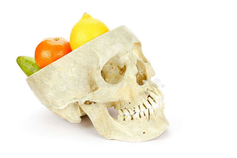 Human skull as fruit scale stock photography