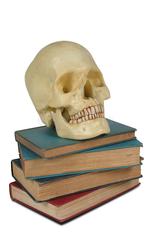 Human Skull on books. Human Skull on a stack of old books isolated over white royalty free stock images