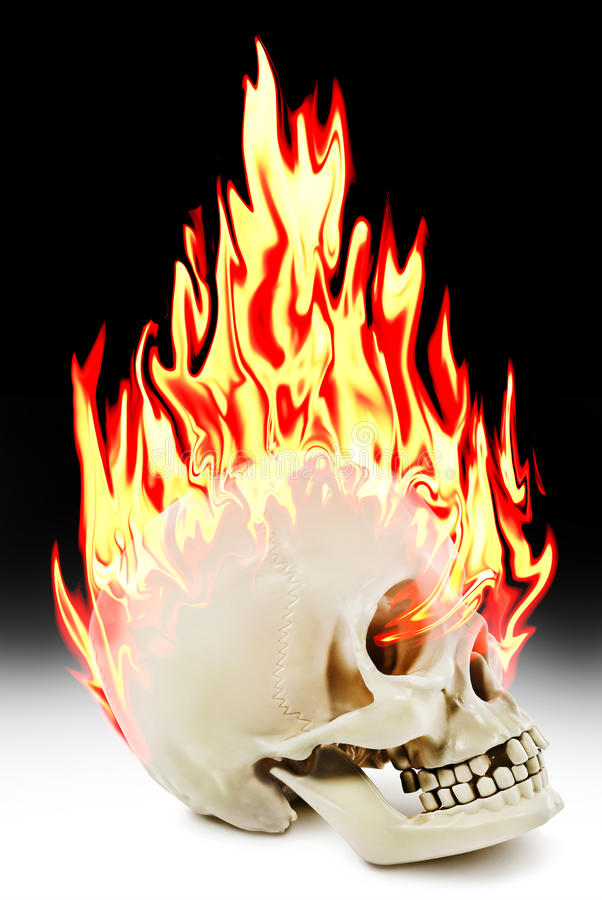 Download The Human Skull Burning In The Fire Stock Photo - Image: 35542856
