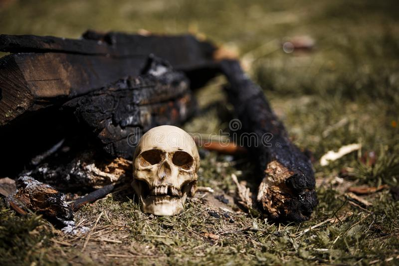 Human skull among the coals in the ashes of the fire. royalty free stock photos