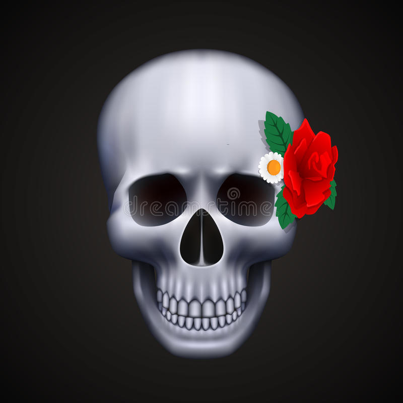 Free Human Skull Isolated With Flower Stock Images - 49534764