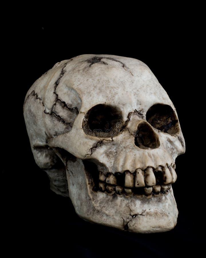 Free Human Skull On Black Background Stock Image - 15902981