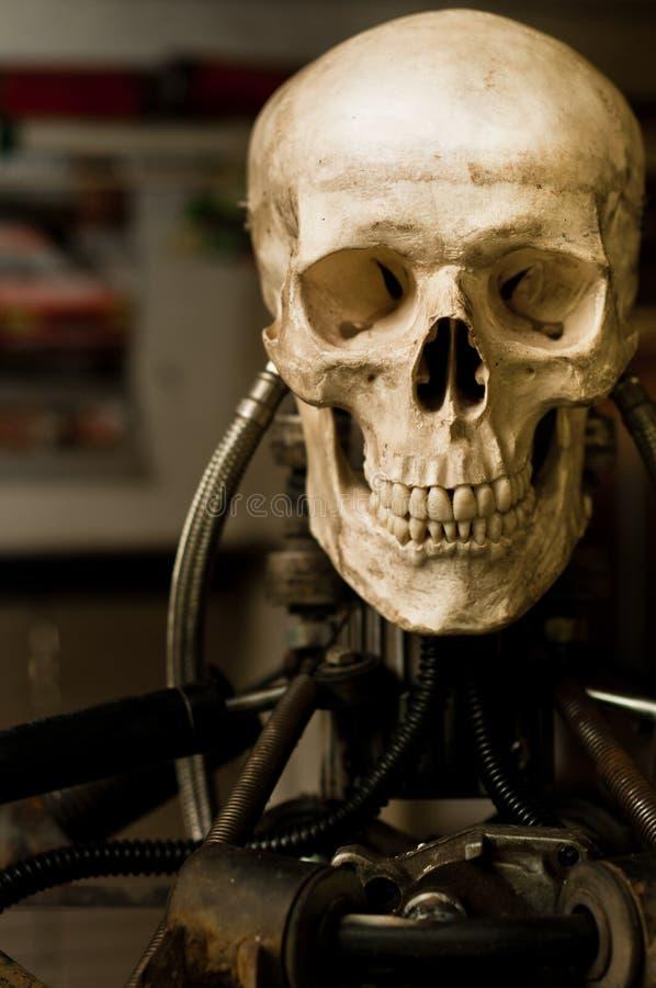 Human skull on robot body. Close up stock photos