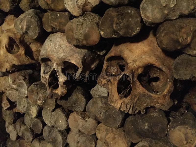Human skull surrounded by bones stock photo