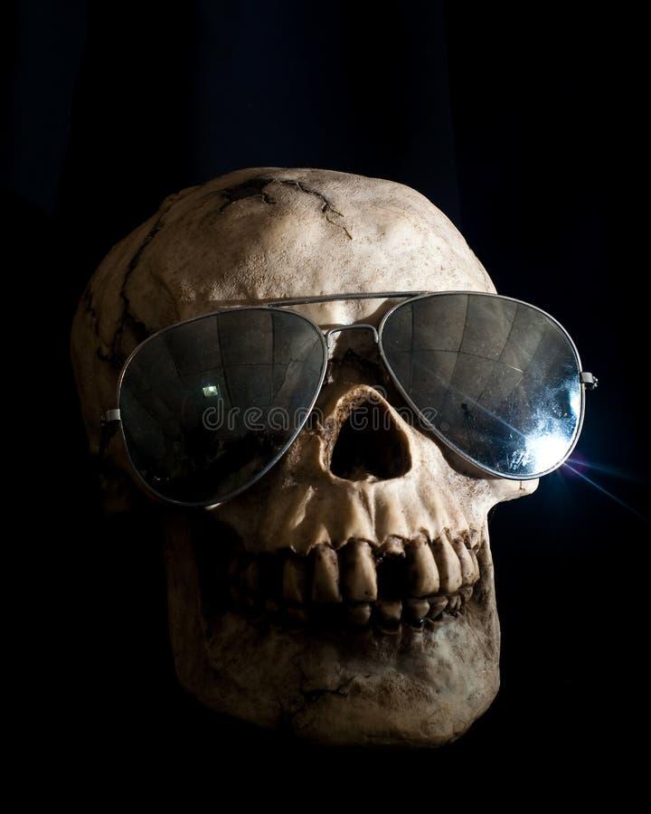 Human Skull Wearing Sunglasses royalty free stock images