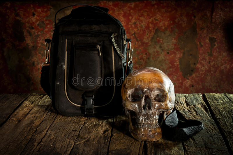 Human skull on wood and leather bags , stock images