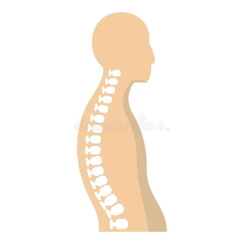 Human spine icon. Flat on white background vector illustration vector illustration