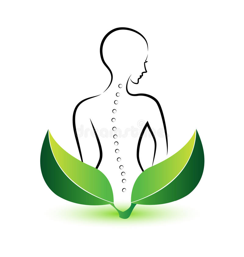 Human Spine logo. Chiropractor logo -Human Spine icon illustration vector stock illustration