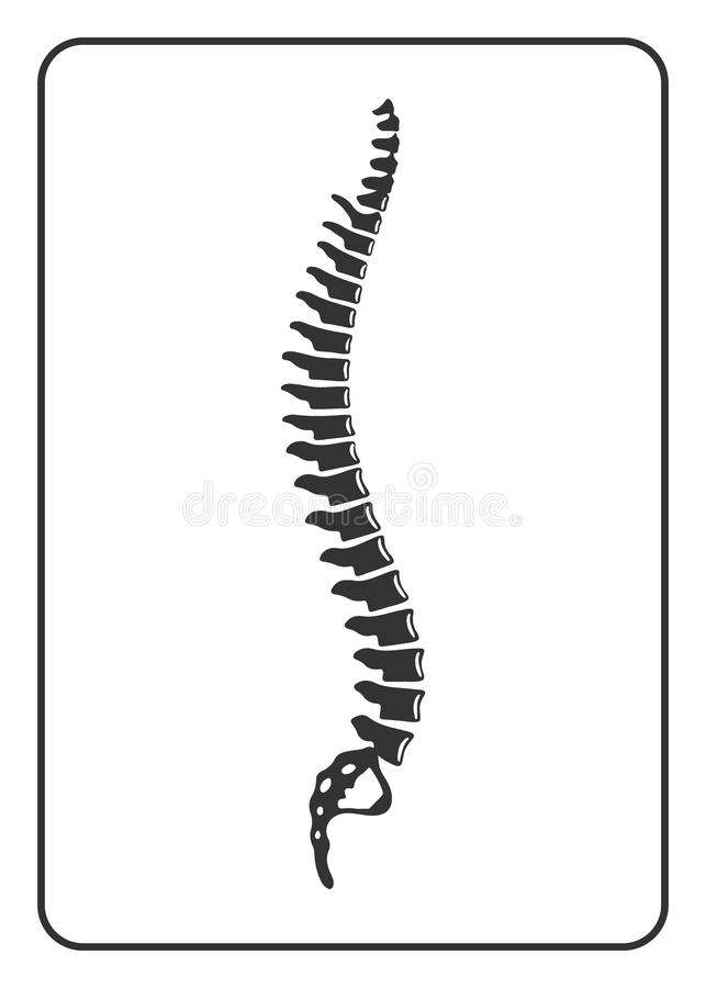 Human spine sign. Black silhouette icon isolated on white background. Element for graphic design, website, medical or orthopedic business. Symbol of skeleton vector illustration