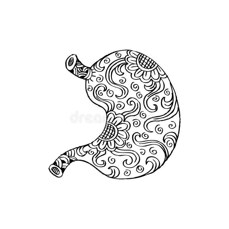 Human stomach. In doodle style stock illustration