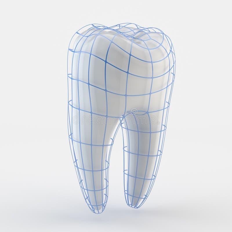 Download Human Teeth stock illustration. Illustration of blue - 21713793