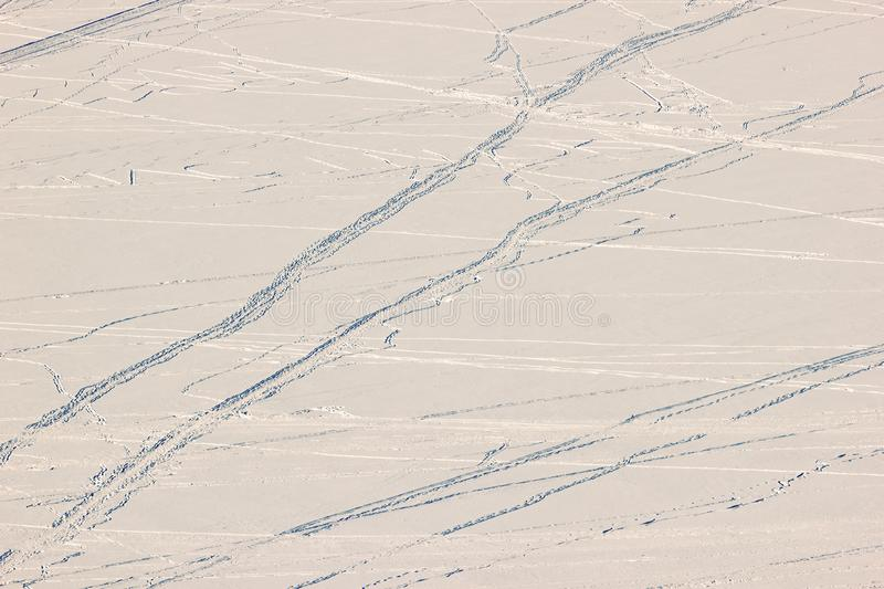 Human traces and traces of animals in the snow on a frozen river. stock image