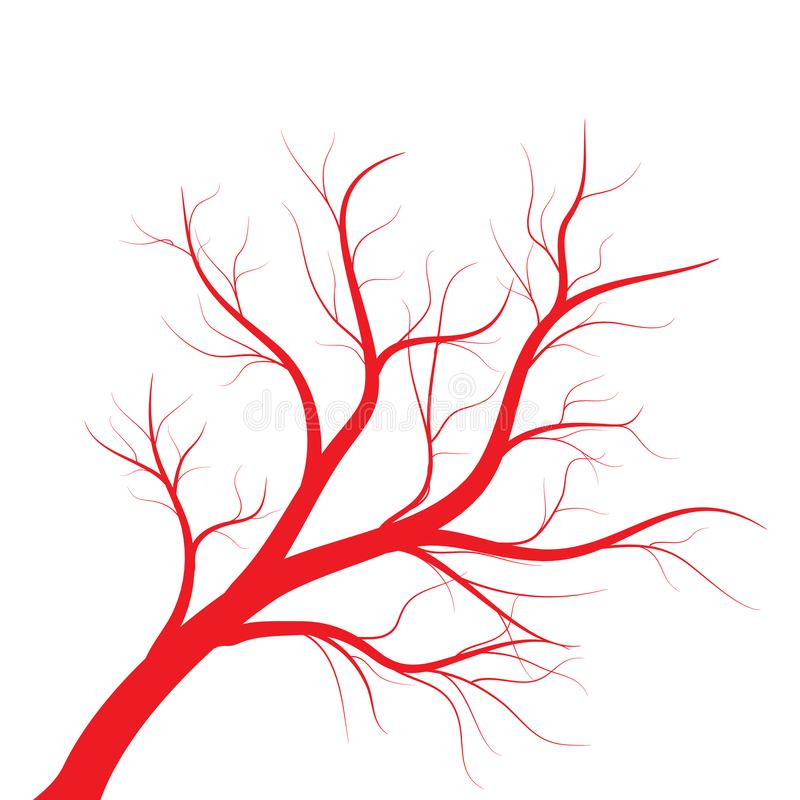 Human veins, red blood vessels design on white backgroun. Vector illustration. Human veins, red blood vessels design on white backgroun. Vector royalty free illustration