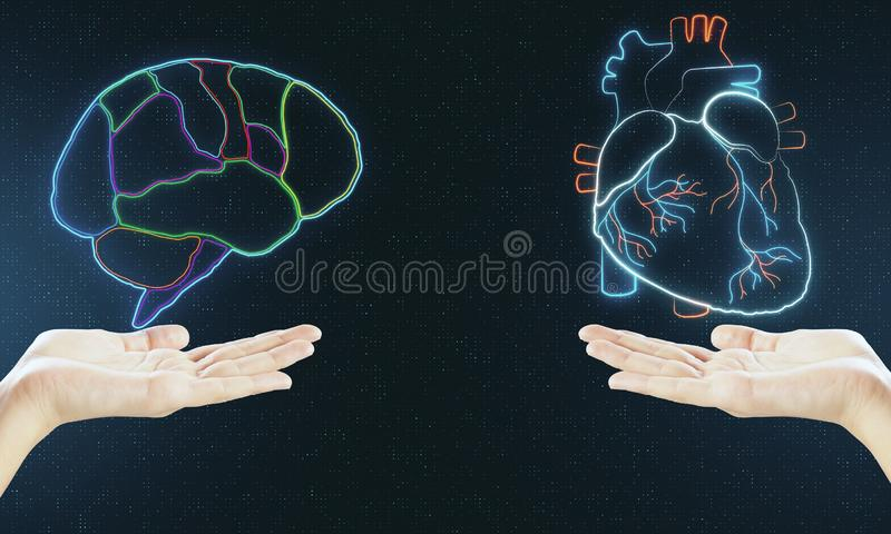 Human verses Artificial Intelligence concept with digital brain and heart hologram layouts above hands stock photography