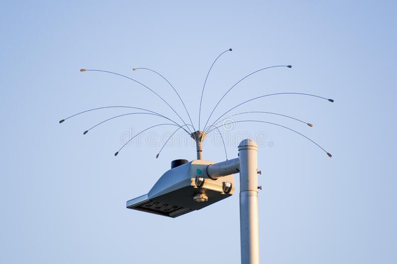 Humane bird deterrent device installed on top of a street lamp; San Francisco Bay Area, California stock image