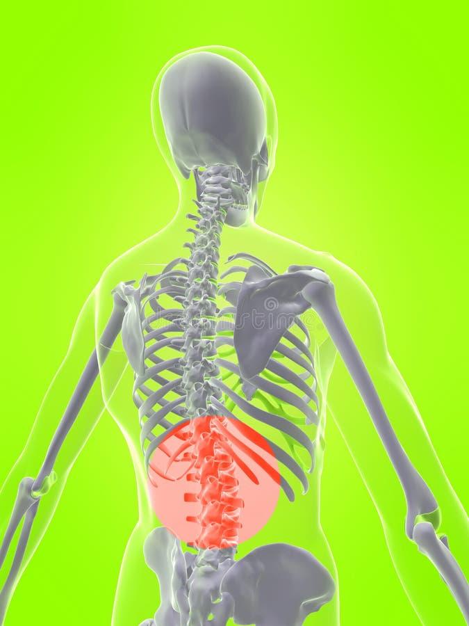 humanen smärtar ryggen royaltyfri illustrationer