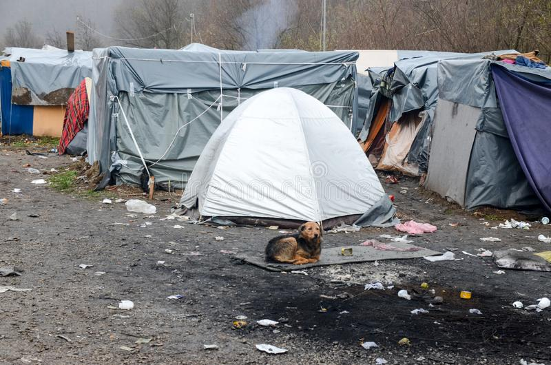 A humanitarian catastrophe in Refugee And Migrants Camp In Bosnia And Herzegovina. The European migrant crisis. Balkan Route. Tent. S in camp in Velika Kladusa stock images