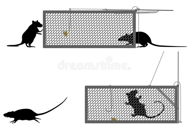 Humanitarny szczura oklepiec ilustracji