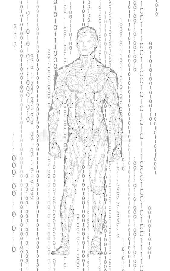Humanoid αρρενωπός δυαδικός κώδικας κυβερνοχώρου ατόμων μόνιμος Χαμηλό πολυ polygonal ανθρώπινο σώμα τεχνητής νοημοσύνης ρομπότ διανυσματική απεικόνιση