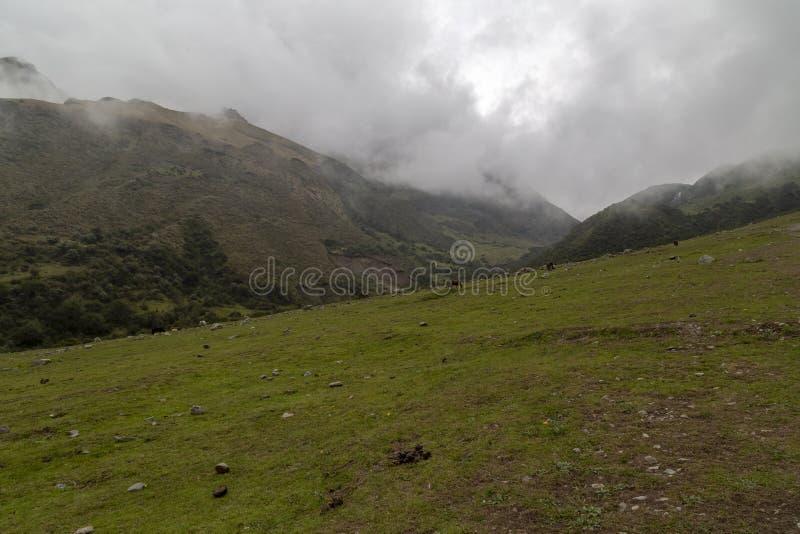 Humantay jezioro na Salkantay wędrówce, Peru, lokalizować w Cordillera Vilcabamba, Cusco zdjęcia stock