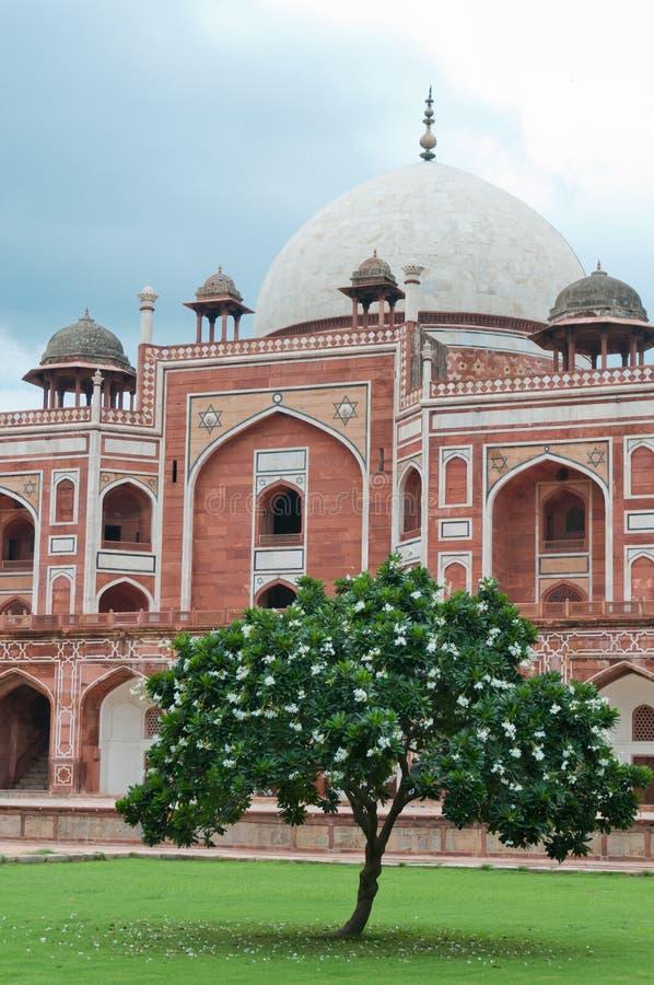 Humayun's tomb stairs, Delhi, India royalty free stock photo