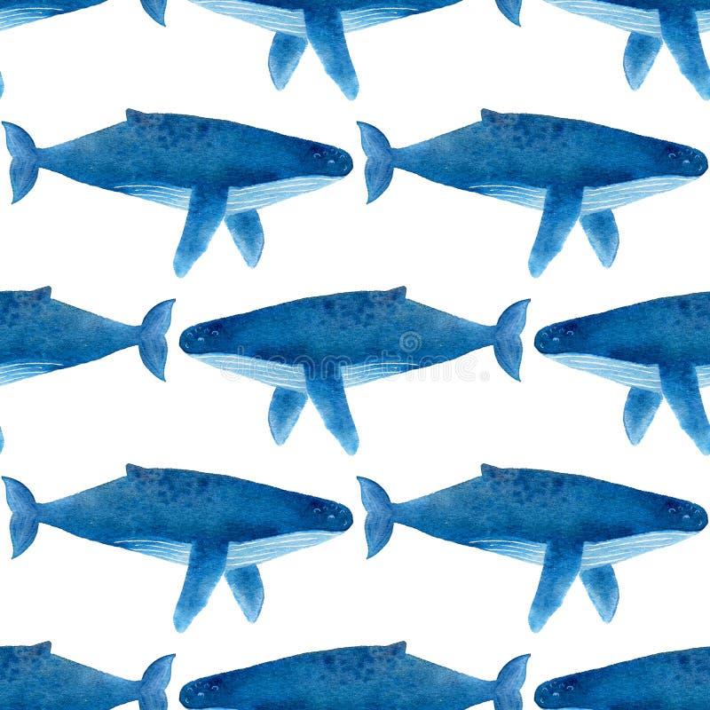 Humback wieloryb Bezszwowy akwarela wzór ilustracja wektor