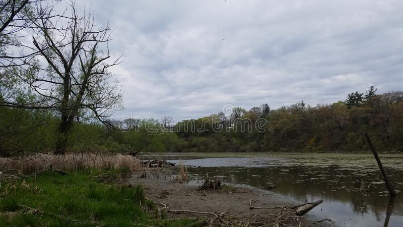 Humber river view stock photography