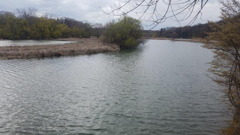 Humber river view stock photos