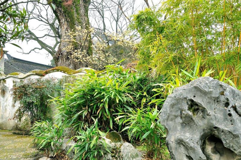 Humble Administrator's Garden royalty free stock photo