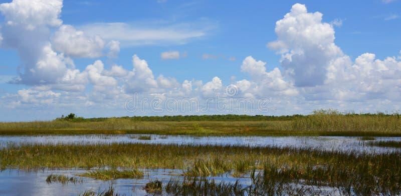 Humedal de la Florida Parque nacional de los marismas en la Florida, los E.E.U.U. fotografía de archivo