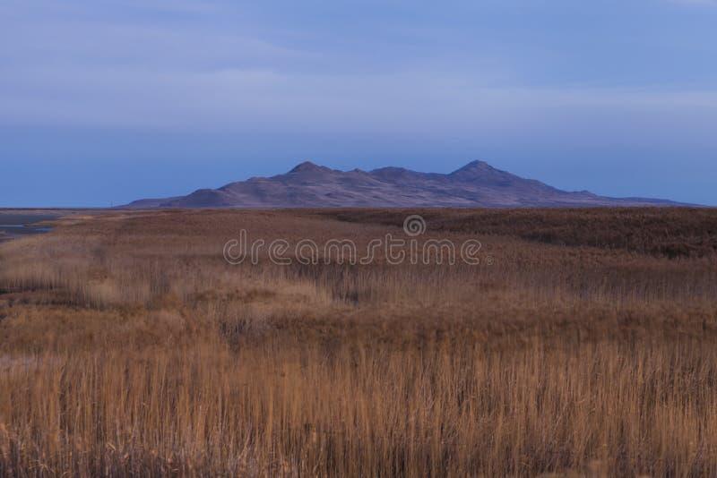 Humedales del Great Salt Lake fotos de archivo libres de regalías